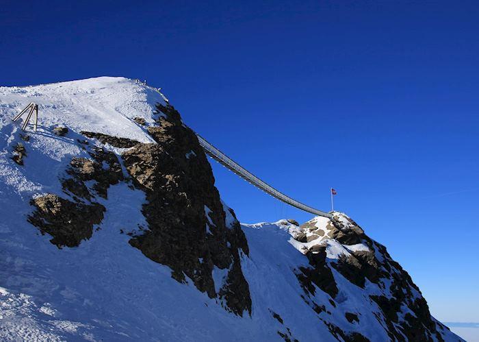 Peak to Peak suspension bridge