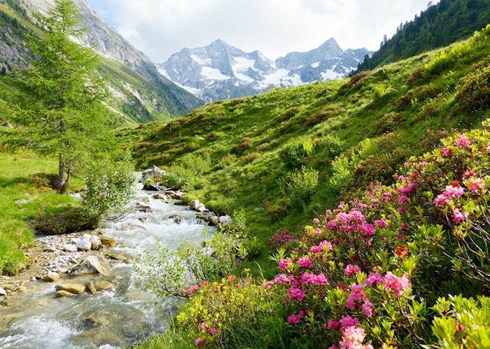 Austria in spring