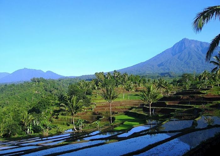 Scenery inland from Medewi, Indonesia