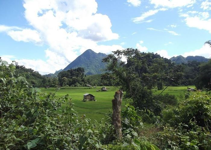 Trekking scenery around Nong Khiaw, Laos