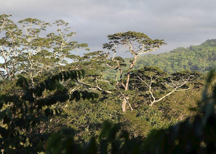 Nkhotakota Wildlife Reserve, Malawi