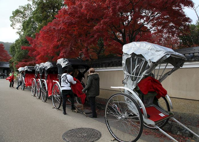 Rickshaws in autumn