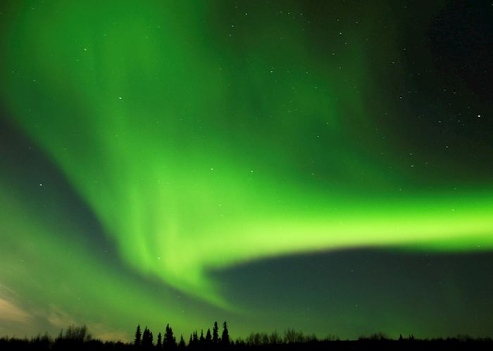 Aurora Borealis over Fairbanks, Alaska