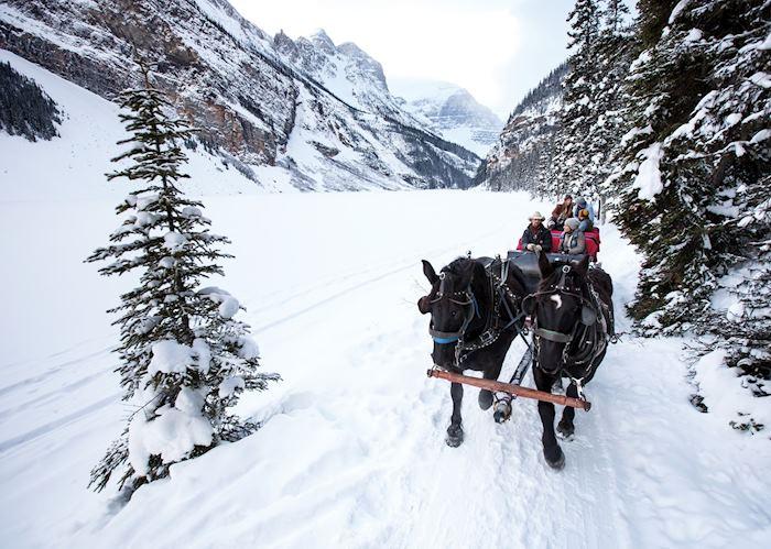 Sleigh ride in Banff National Park