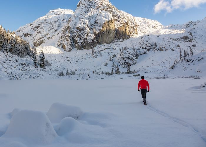 Snowshoe experience, Banff National Park