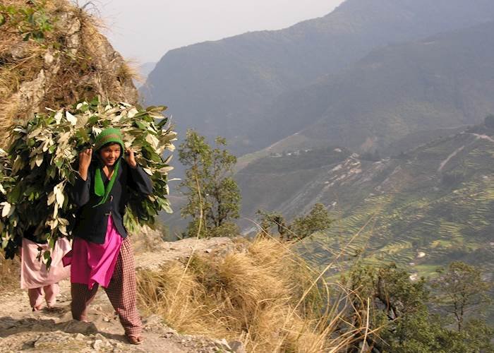 Path to Leti 360, Uttaranchal