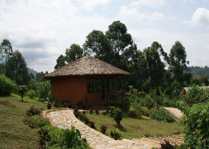 Mahogany Springs, Bwindi Impenetrable National Park