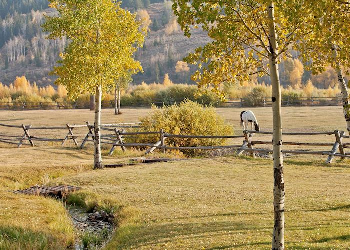 Goosewing Ranch, Jackson, WY - Grand Teton National Park