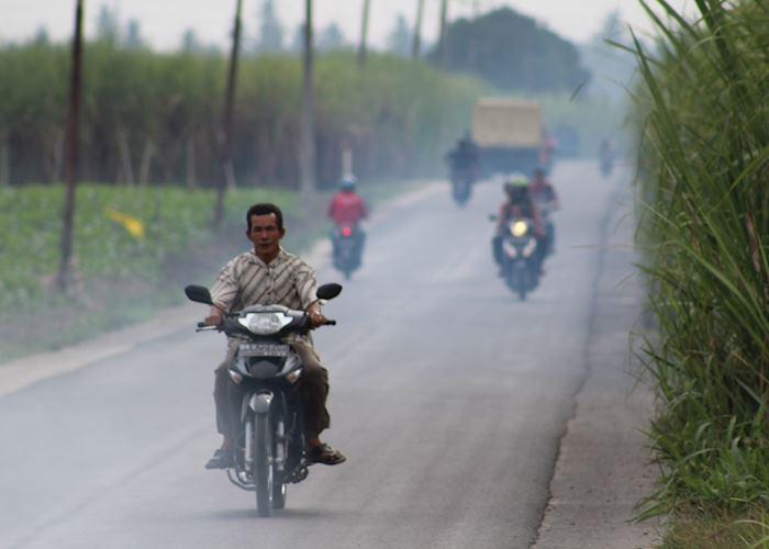 Scenery outside of Medan, local roads through tobacco plantations, Sumatra
