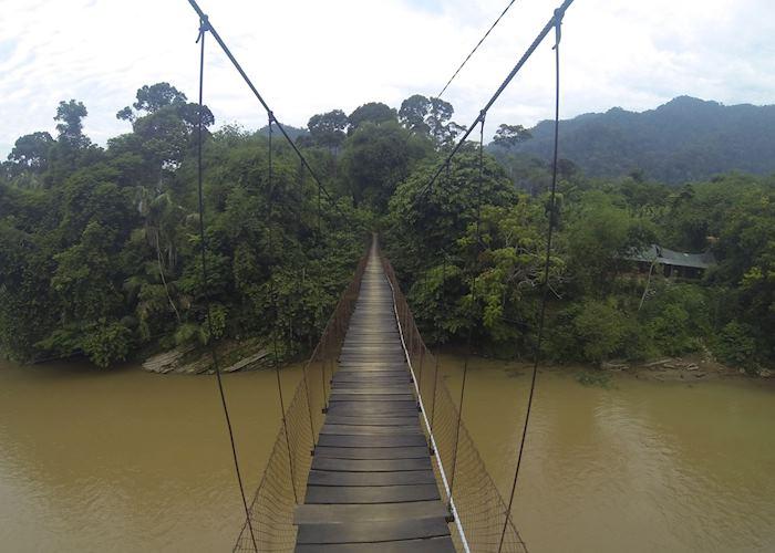 Walking across the bridge to Jungle Lodge, Tangkahan