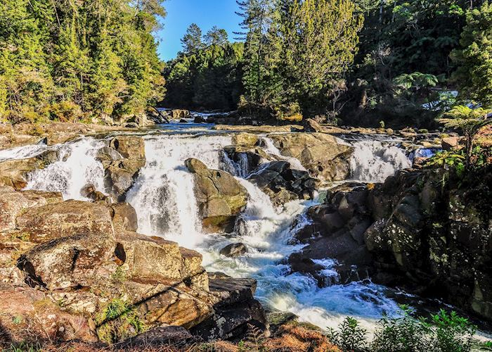 Waterfall in the Coromandel Peninsula