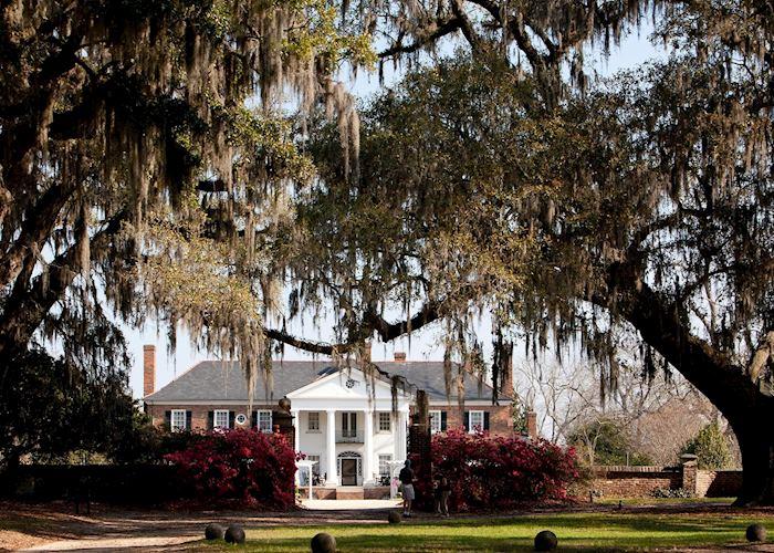 Boone Hall Plantation, Charleston, SC