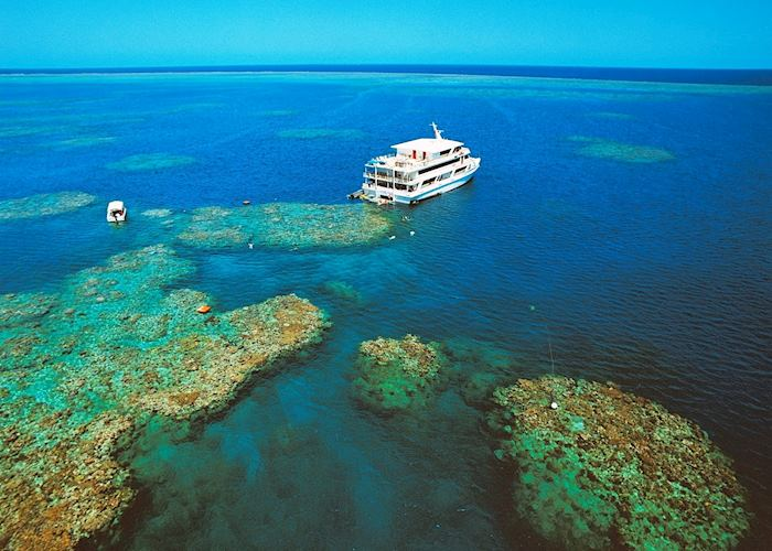 Coral Expeditions, Great Barrier Reef
