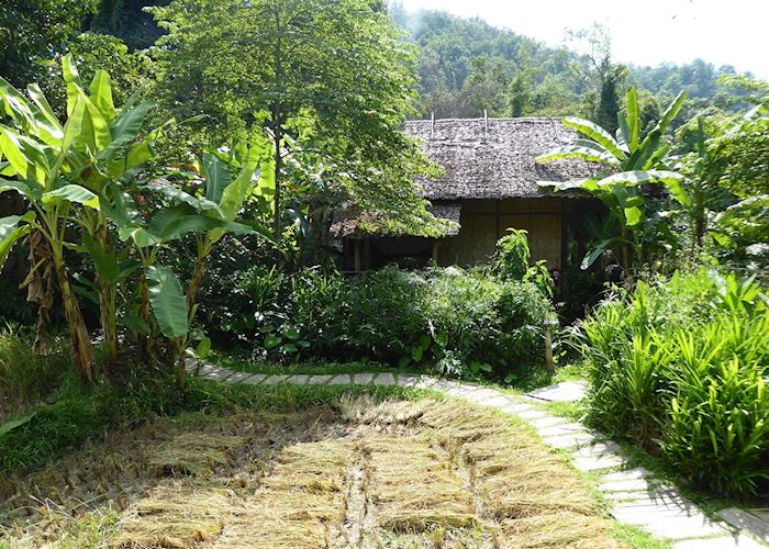 One of the bungalows by the rice fields, The Fern Resort