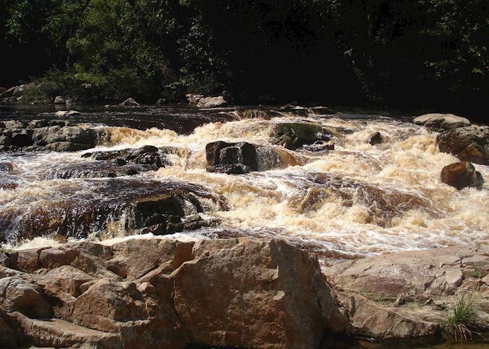 Taman Negara National Park, Malaysia
