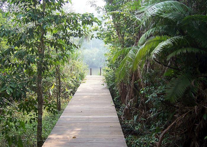 Rimba Lodge, Tanjung Puting