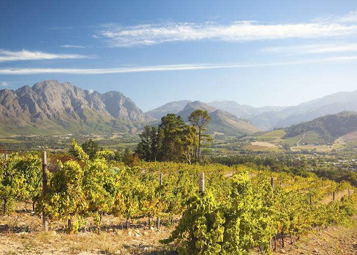 Franschhoek, the Cape Winelands