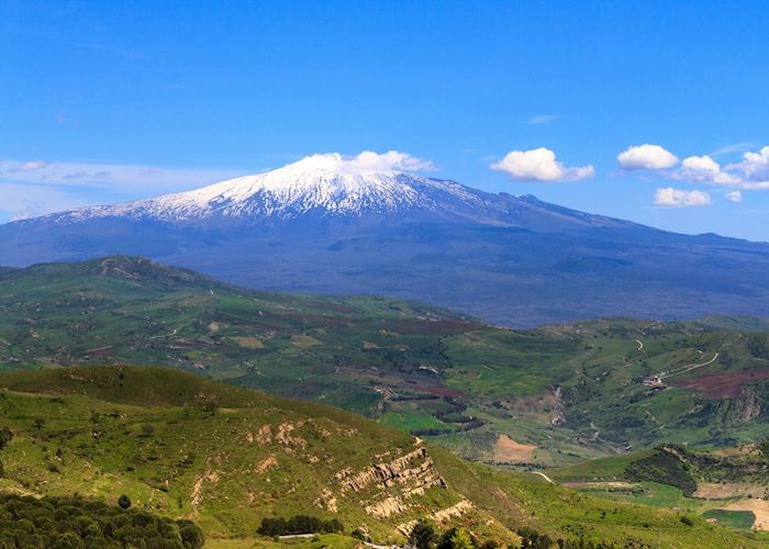 Slopes of volcano, Mount Etna