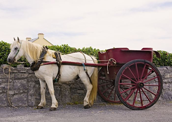 Horse and cart, Inis Mor