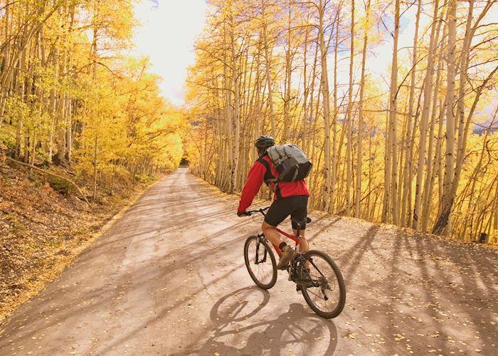 Mountain Biking near Aspen