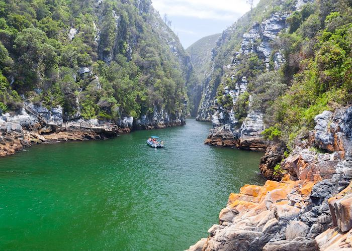 The Tsitsikamma National Park, South Africa