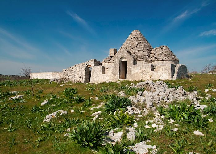 Ancient trulli, Fasano