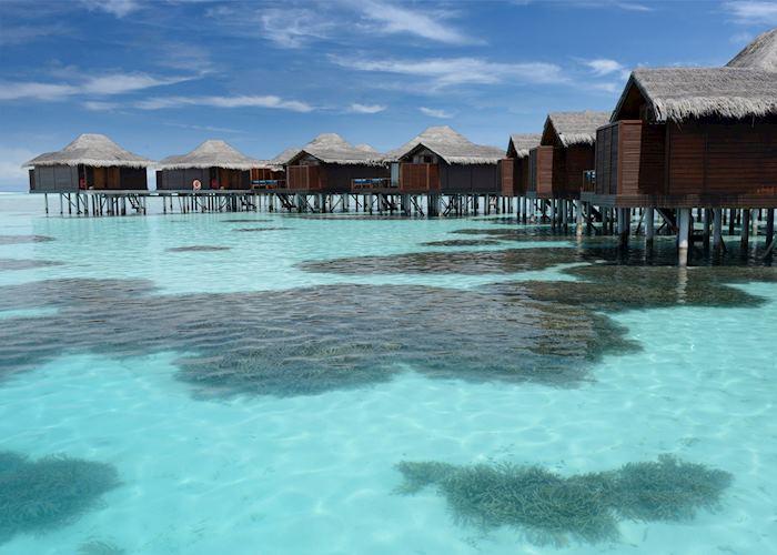 Coral gardens, Anantara Veli Maldives Resort, Maldive Island