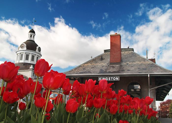 City Hall in Springs, Kingston