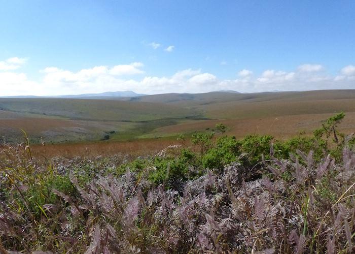 Rolling hills of Nyika Plateau