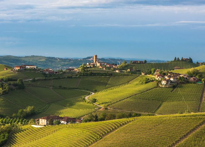 Langhe countryside, Piedmont