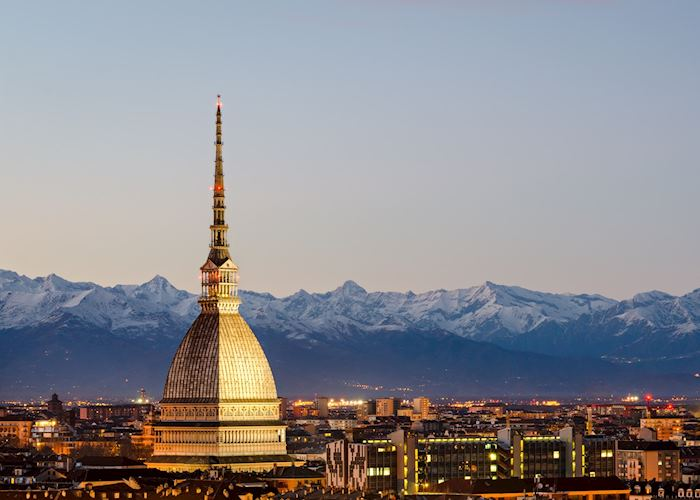 City skyline and the Alps, Turin