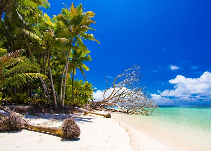 Beach, Alphonse Island Resort, Alphonse Island