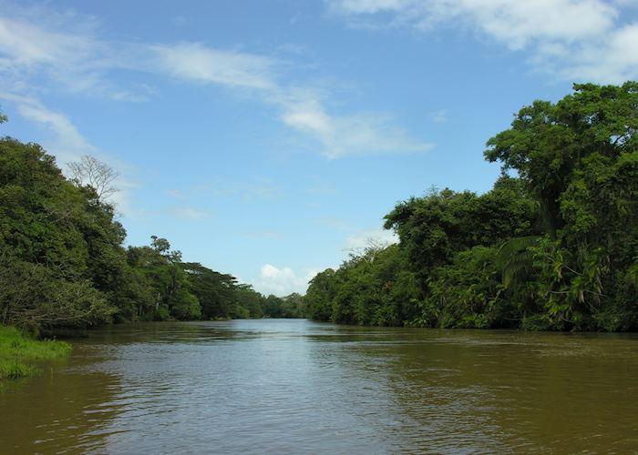 Rio Frio, Cano Negro Wildlife Refuge
