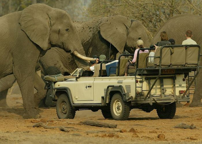 Game drive in the Linyanti Concession