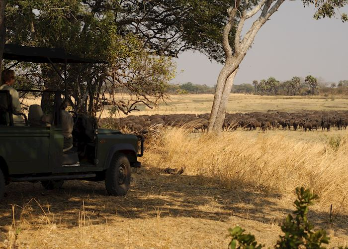 Game viewing in Katavi National Park