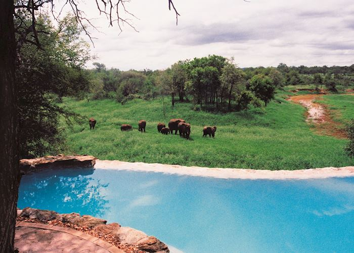 Pool, Garonga Safari Camp