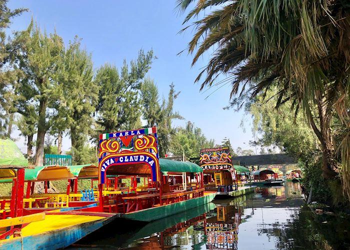 Xochimilco Floating Gardens