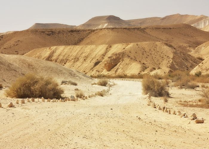 Desert trail, Makhtesh Ramon