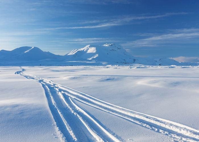 Glacier tracks