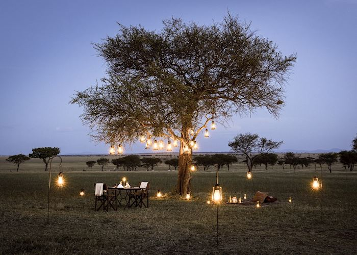Bush dinner at Sabora Tented Camp