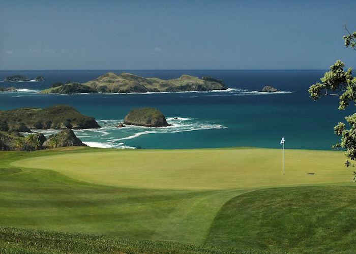 Golf course, Kauri Coast