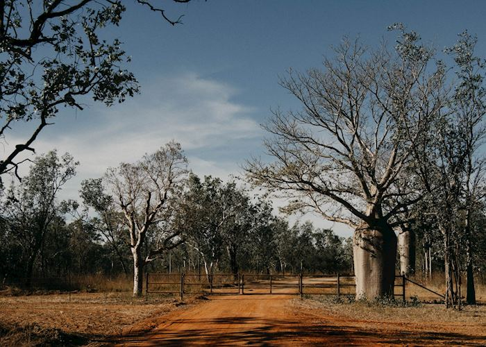 Kununurra to Bullo River Station self drive