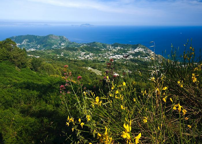 Views over Forio, Ischia