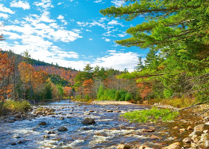 Swift River in the White Mountain National Forest, New Hampshire