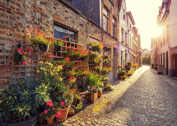 Flower market in Bruges, Belgium