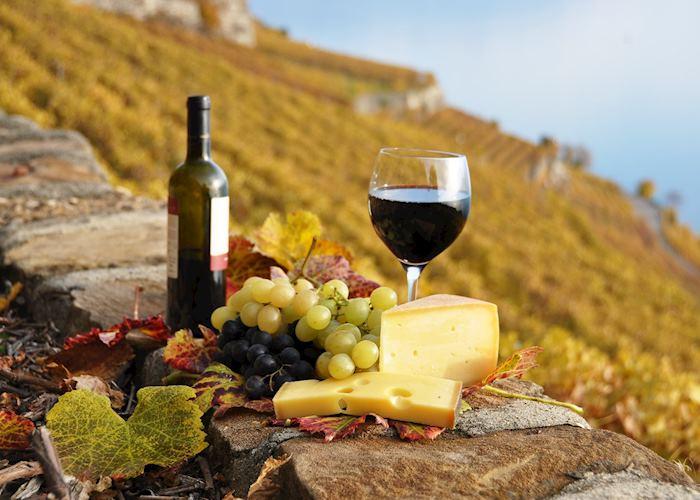 Lavaux wine tour, Montreux