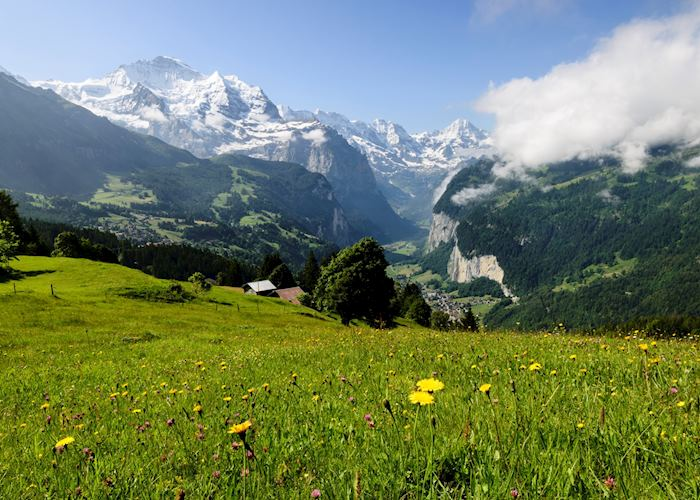 Grindelwald, Bernese Oberland