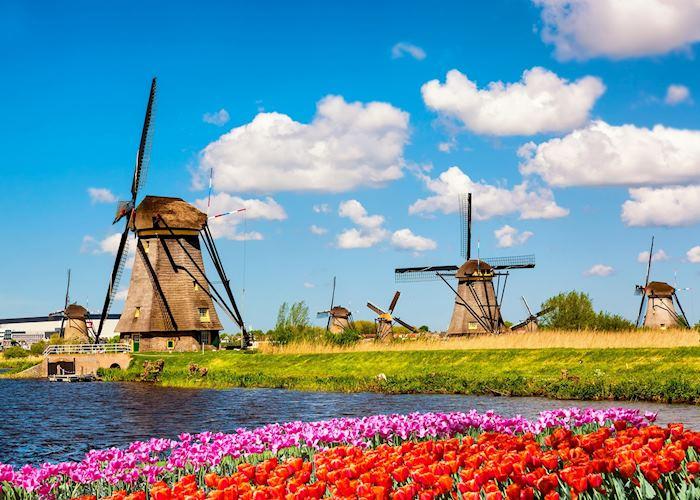 Windmills and tulips of Kinderdijk