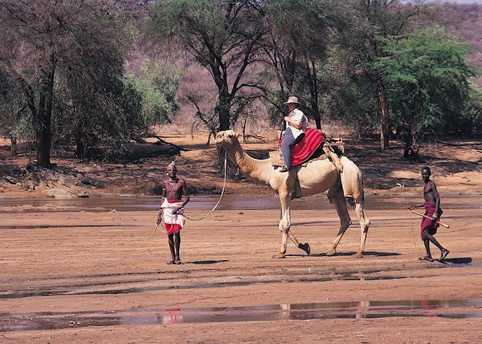 Camel safari, Samburu Intrepids