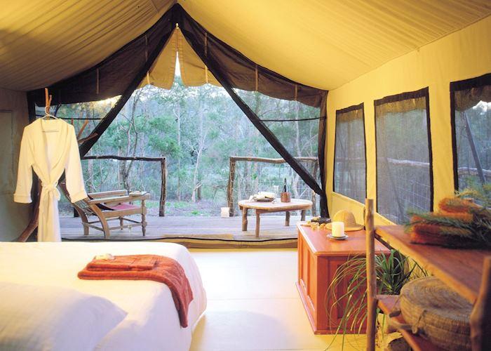 Deluxe Safari Tent, Paperbark Camp, Jervis Bay